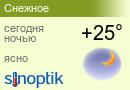 Прогноз погоды в Снежном