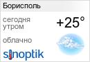 Прогноз погоды в Борисполе