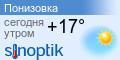 Погода Понизовка