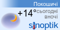 Погода у Покошичах